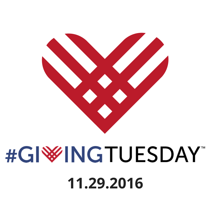 Giving Tuesday Donation Ideas